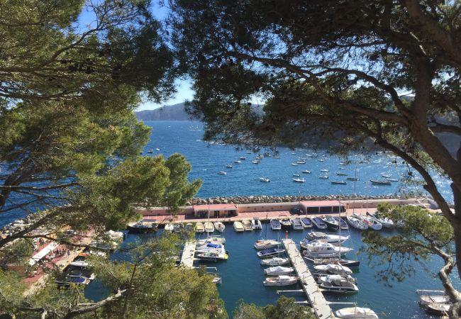 Ferienwohnung in Llafranc - LLAFRANC 2