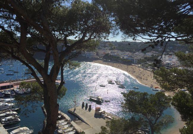 Ferienwohnung in Llafranc - LLAFRANC  1