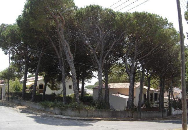 Plot in Escala - T10220-Venut/Vendido/Sold