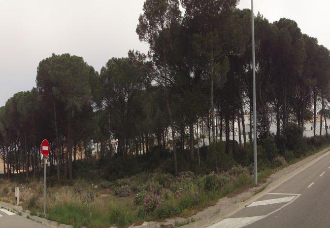 Parcelle à Escala - T10283-ROGER DE FLOR