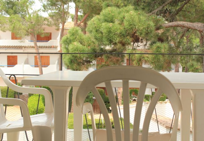 Apartament en Escala - P10270 - Oportunitat !!!