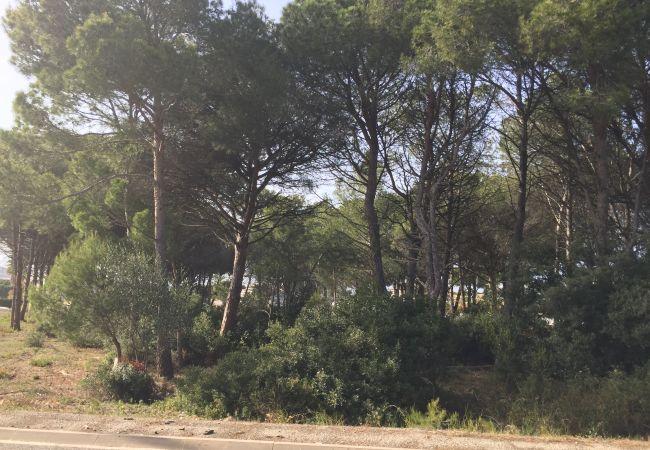 Parcel.la en Escala - T10226-ROGER DE FLOR